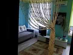 Renting 1k apartment for daily rent, in Petropavlovskaya Borshagovk